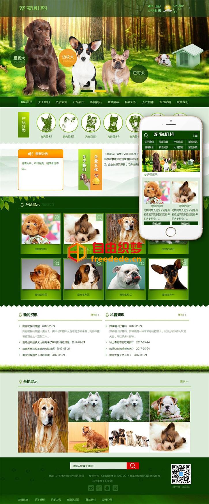 爱上源码网文章dedecms网站源码绿色宠物狗机构类网站织梦模板(带手机端)的内容插图