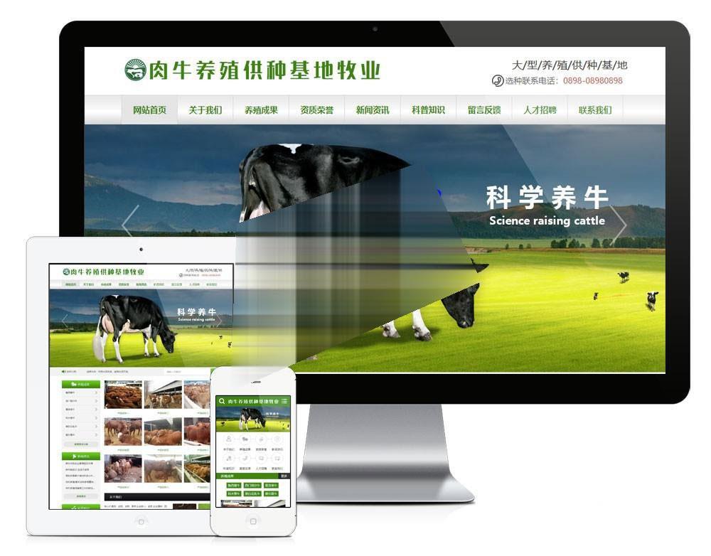 爱上源码网文章肉牛养殖供种基地牧业公司易优cms网站模板源码 带手机端eyoucms去版权的内容插图